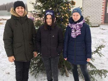 Новогодняя ель д. Васильевка